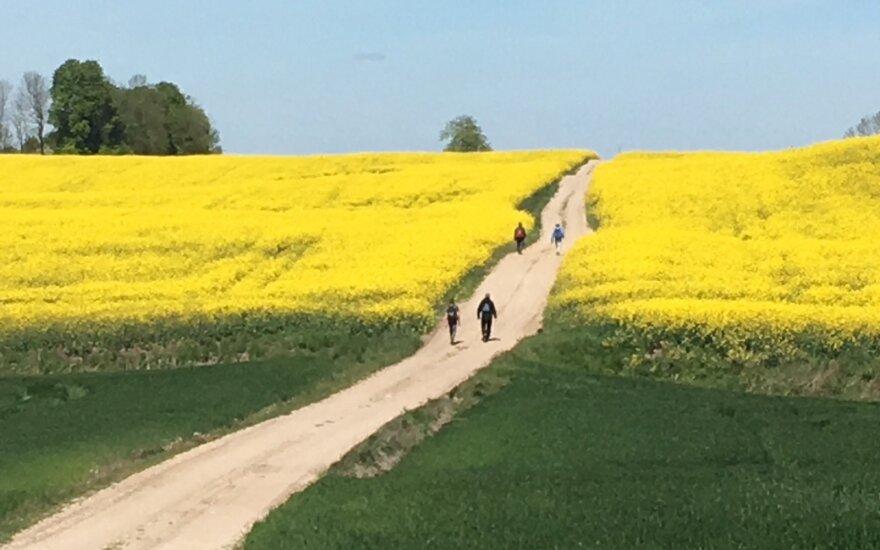 Nestokojantiems ištvermės keliautojams siūlys išbandyti naują kelią Lietuvoje