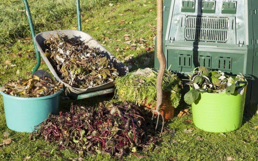 Kaip Lietuvos ekologiniai ūkiai atrodo Europoje