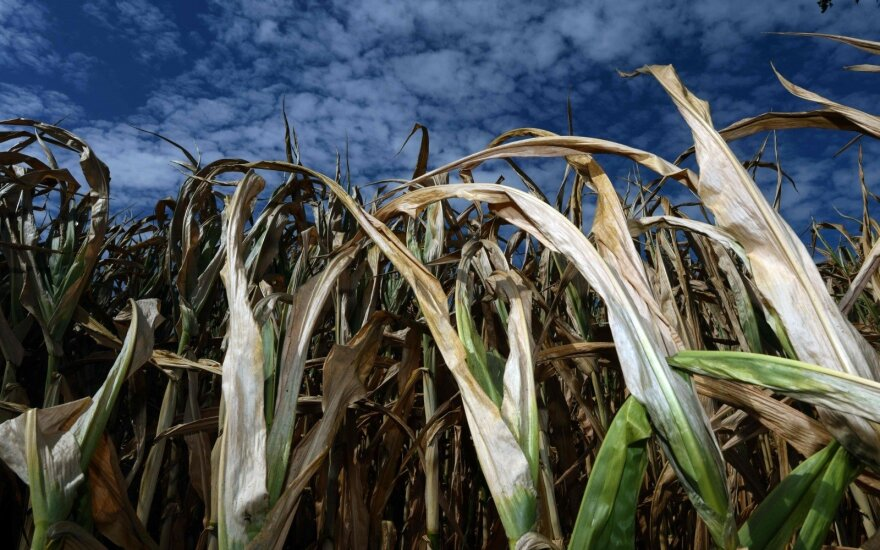Naujų technologijų įmonių banga dairosi į ūkius, kovojančius su nenuspėjamais orais