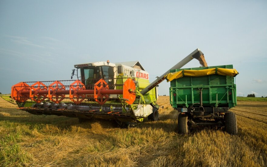 Pasaulyje laukiama rekordinio grūdų derliaus