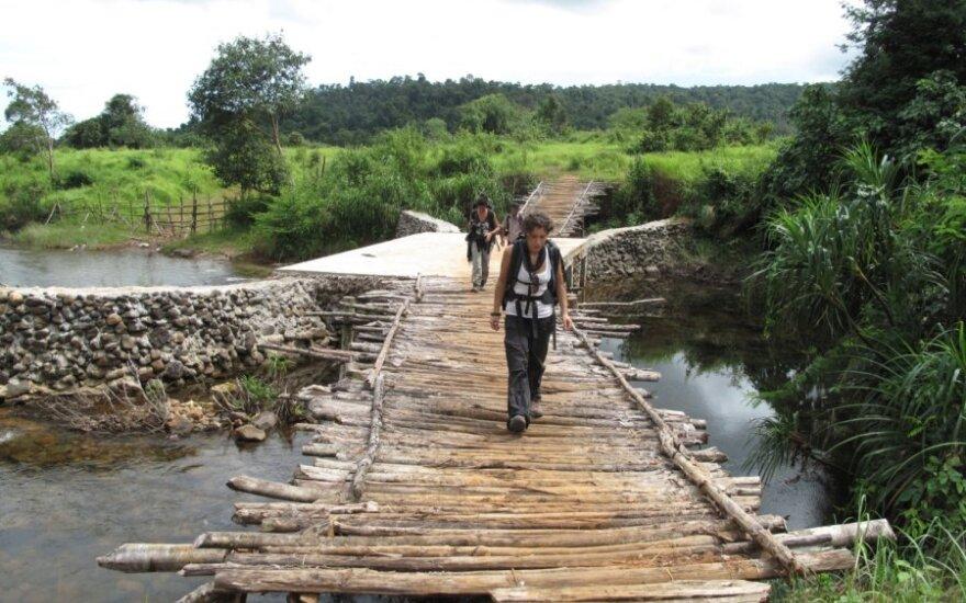 Tiltas per upę