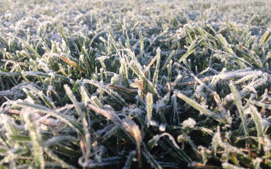 Šiluma ir saulė traukiasi: vietomis gali pasirodyti net sniegas