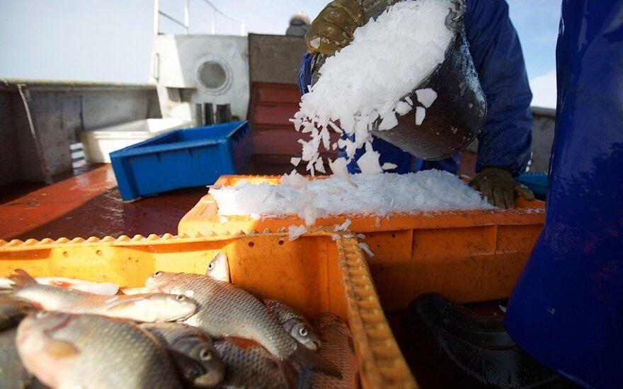 Žvejai organizuoja protestą dėl Kuršių marių: žiūrint į verslininkų skaičius nesueina galai