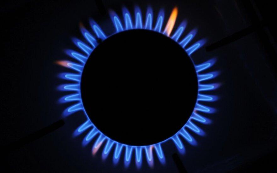Jei prisijungtų suomiai, dujų terminalas Estijoje turėtų perspektyvą