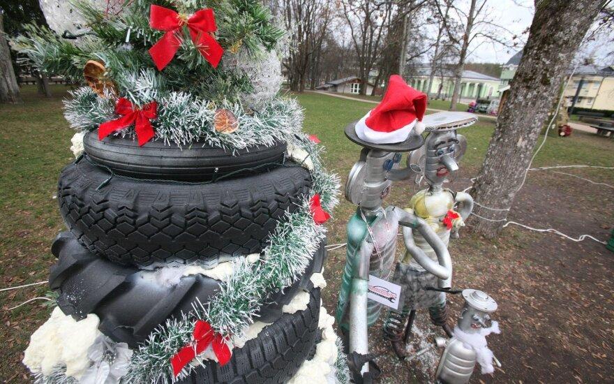 Kalėdinių eglučių parkas Druskininkuose