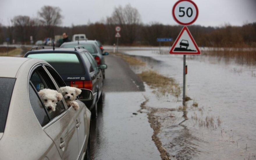 Automobilių perkėla, vandeniui toliau kylant, jau apsemta
