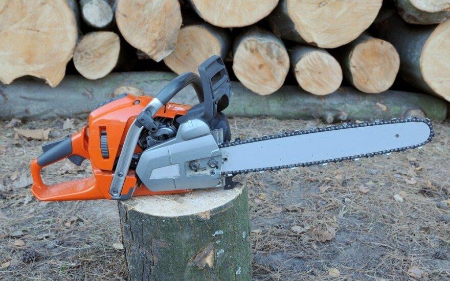Vyriausybė pratęsė atsiskaitymo terminus prekiaujant valstybiniuose miškuose pagaminta žaliavine mediena