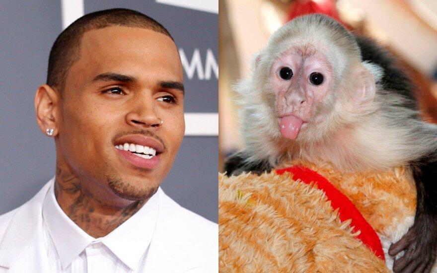Chris Brown ir jo augintinė