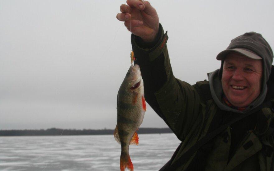 Poledinė ešerių žvejyba su Sigitu Lukšta