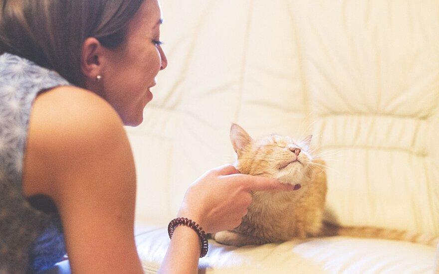 Mergina išdrįso priglausti leukemija sergantį katiną