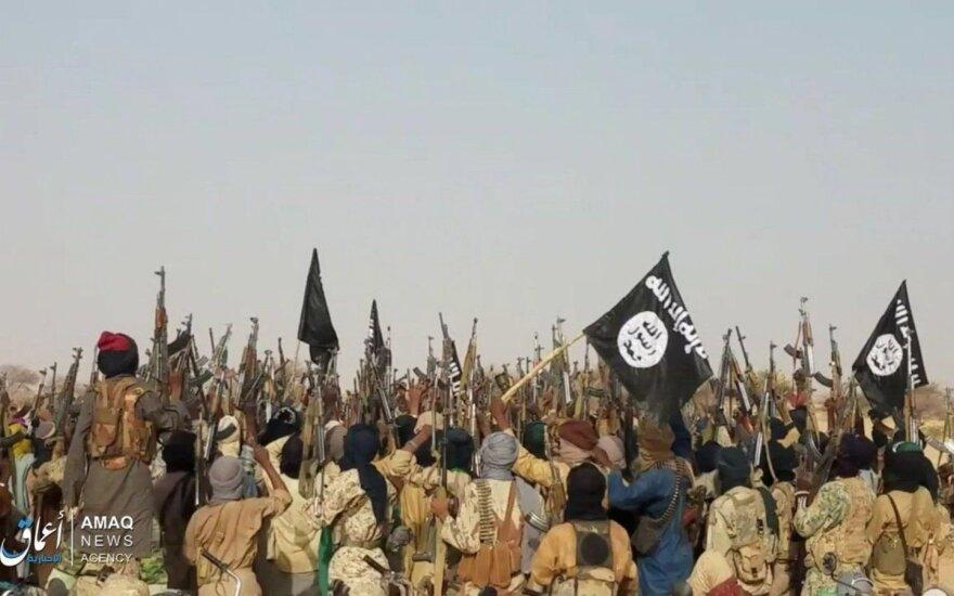 """""""Boko Haram"""" kovotojai Nigerio teritorijoje"""