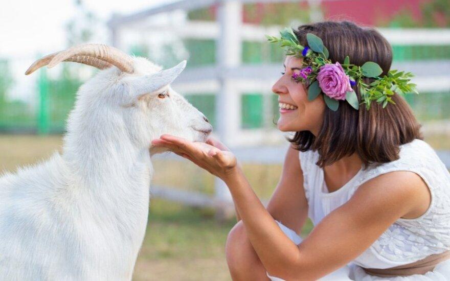 2015 m. horoskopas visiems Zodiako ženklams