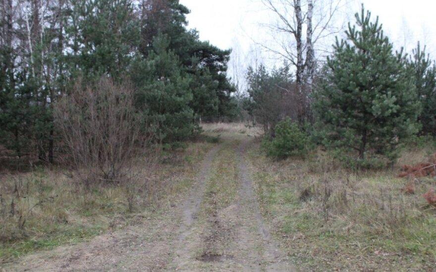 EK nagrinės, ar Lietuva teisėtai apribojo investicijas į žemę