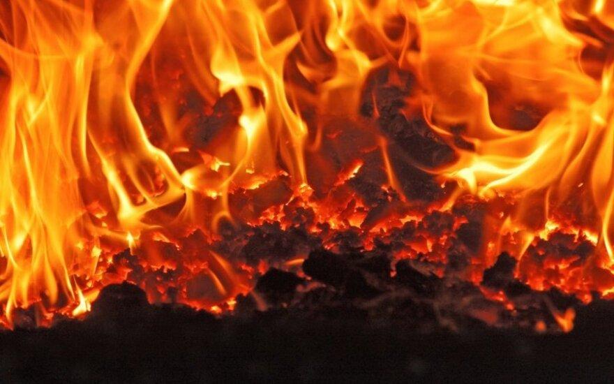 Šiaulių rajone, didelėje medienos apdirbimo įmonėje, kilo gaisras