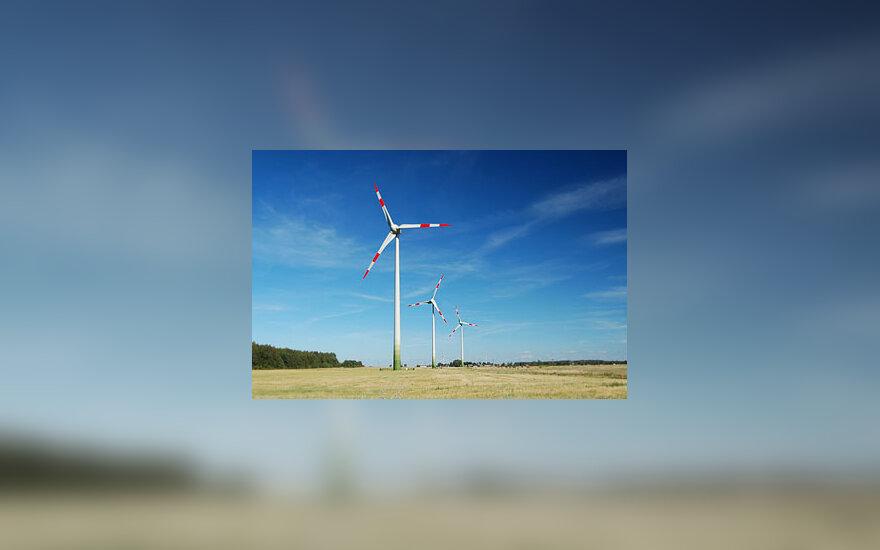 Vėjo jegainės