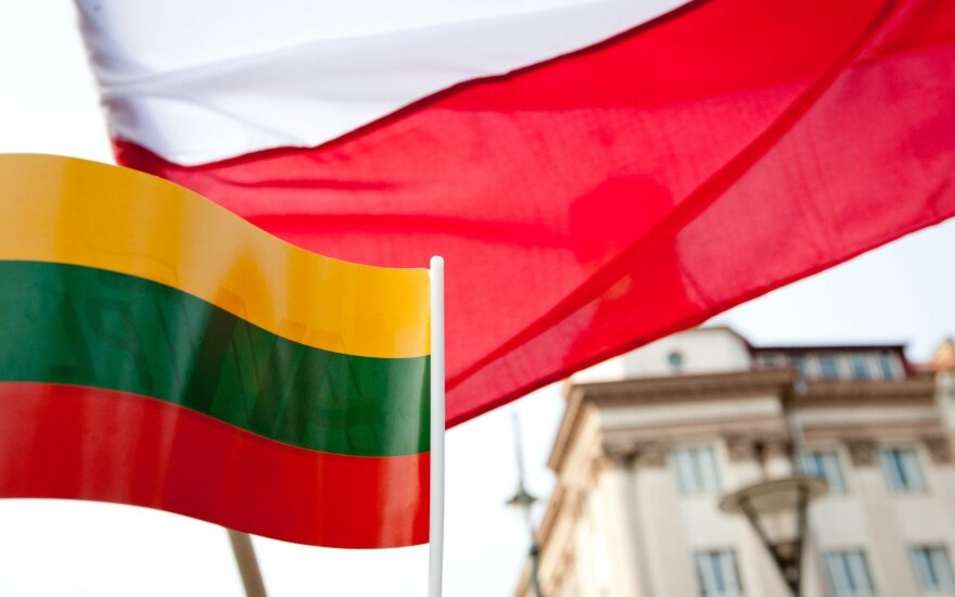 Lithuania's relations with Poland are constructive – foreign minister