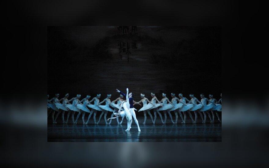 """Moscow City Ballet"" atliekamas ""Gulbių ežeras"""
