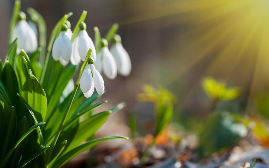 Astrologės Lolitos prognozė balandžio 10 d.: stiprių patyrimų diena