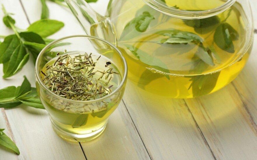 Patarimai neturintiems laiko lieknėti: 8 savaitės su žalia arbata – minus 5 kg