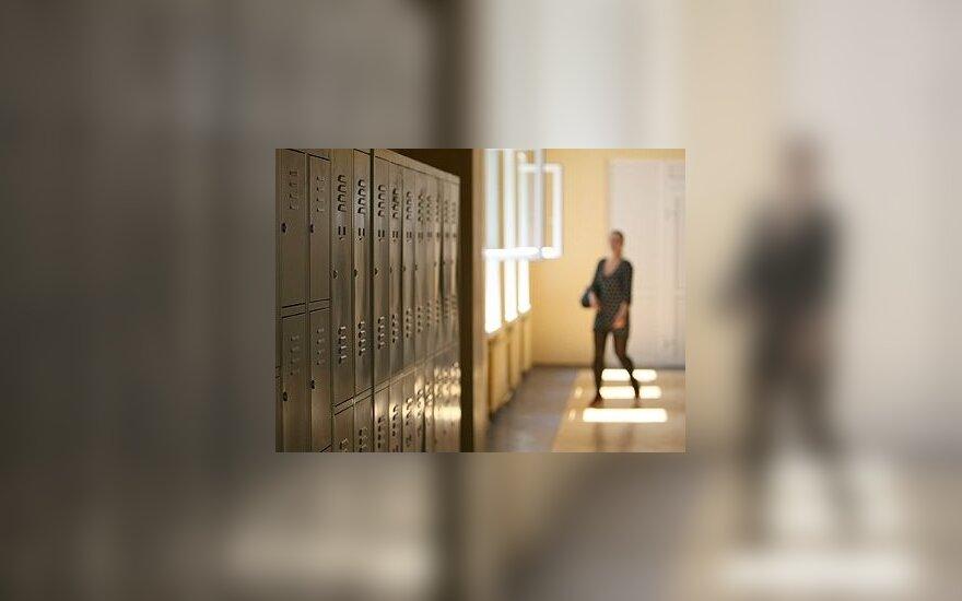 """Mokyklų ir darželių renovavimas – """"blato"""" principu"""