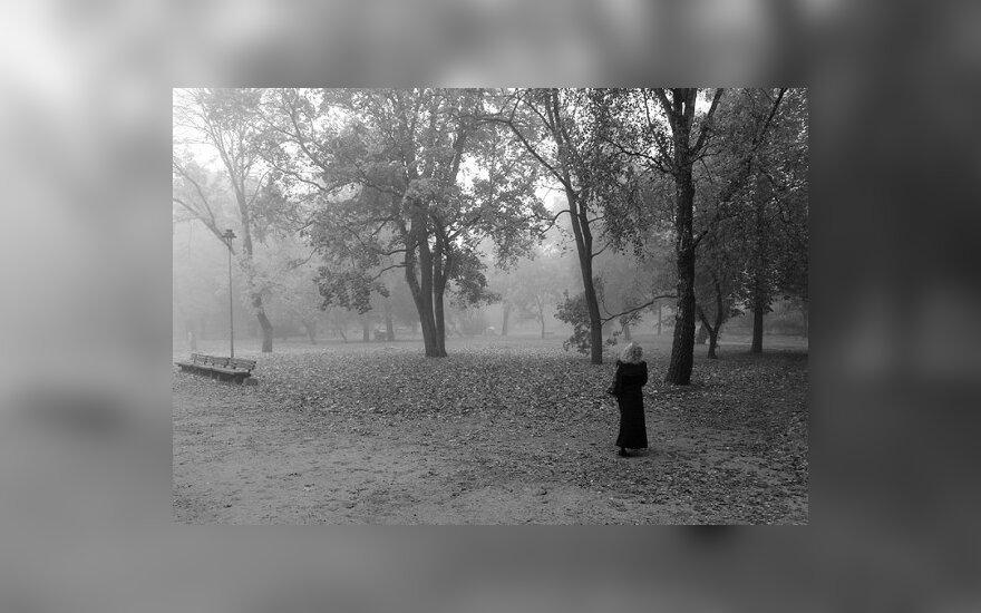 Šiaulių Rėkyvos bendruomenė pakilo už savo parko likimą