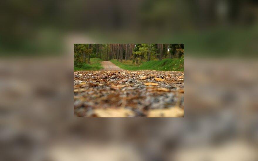 Miškovežiai Varėnos r. gadina vietinius kelius
