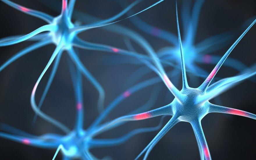Vaistininkė pataria, kaip sustiprinti nervų sistemą