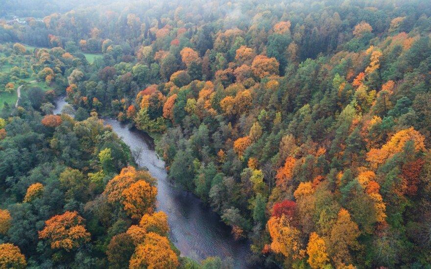 Fiksuok! Lietuvoje įpusėjo auksinis ruduo