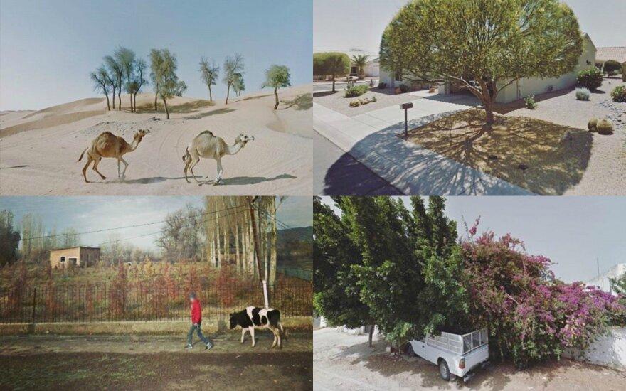 Agorafobikės kelionės (Google Street View akimirka)