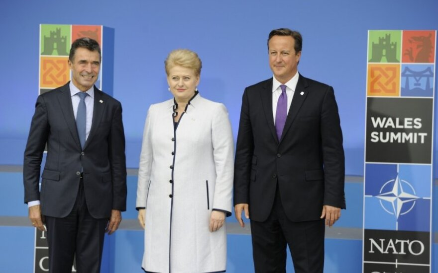 Anders Fogh Rasmussen, Dalia Grybauskaitė, David Cameron