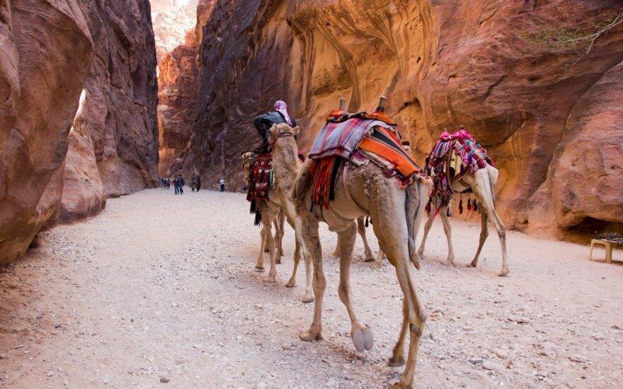 Prarastoji Petra: dykumų miestas, kuris pralobo neįtikėtinu būdu