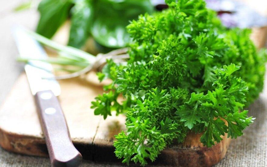 Norite būti sveiki – gerkite petražolių arbatą
