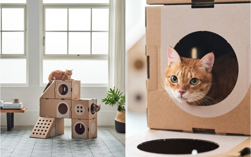 Kartoninis namelis katėms