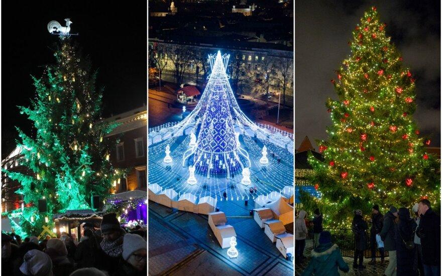 Rygos, Vilniaus ir Talino Kalėdų eglės