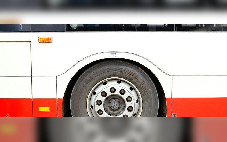Ar Lietuvoje viešasis transportas populiarinamas?