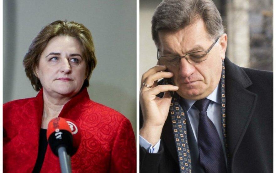 Po D. Grybauskaitės boikoto: kas važiuos į Sočį?
