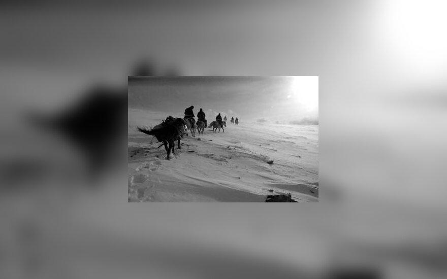 pūga, kelionė, arkliai, keliautojai