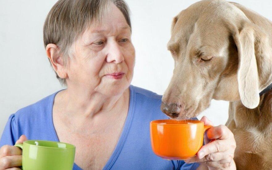 Šuns draugija daro teigiamą įtaką kraujospūdžiui
