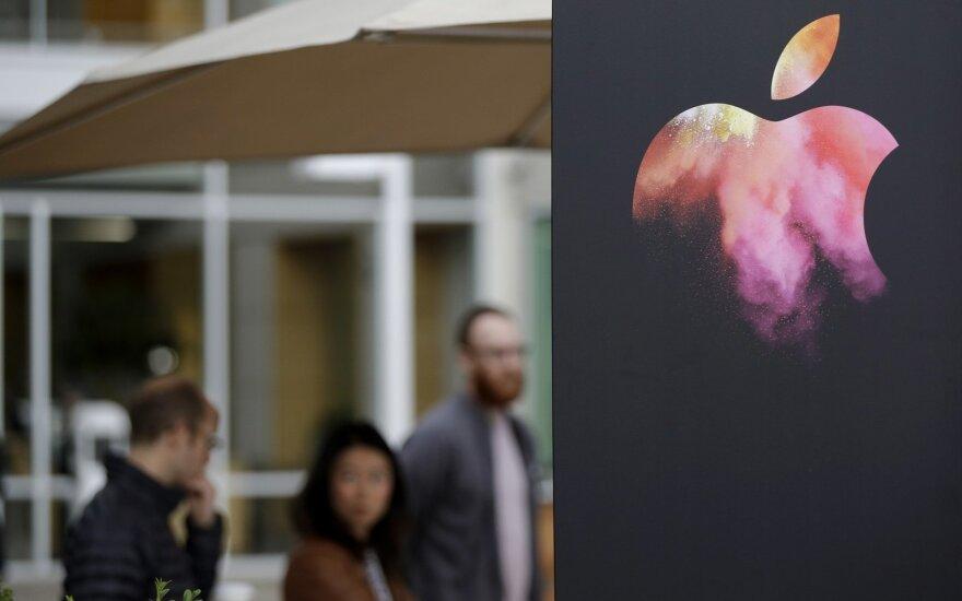 """Apple"" finansų vadovas: sienos mokestis būtų blogas ekonomikai"