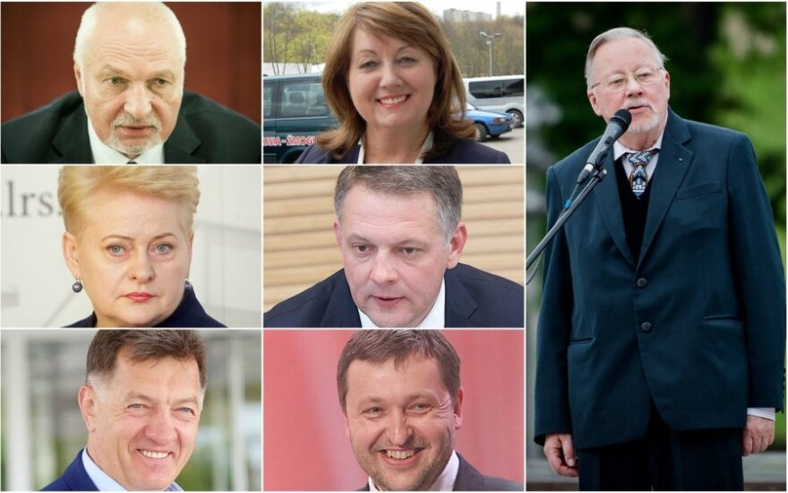Lithuania's most influential politicians