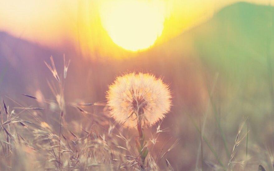 Astrologės Lolitos Žukienės prognozė gegužės 11 d.: nusiteikite permainoms