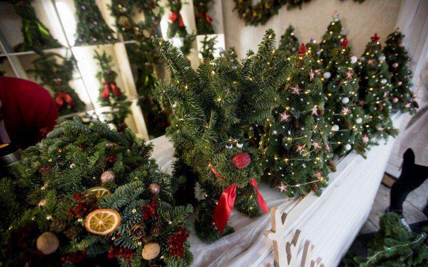 Panevėžys jau pasiruošė šventėms: įvyks pirmoji kalėdinė mugė
