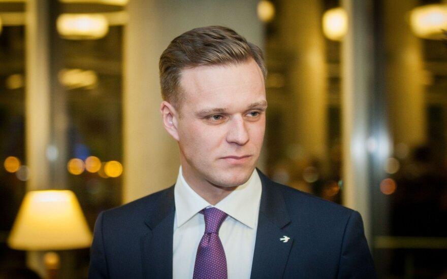 G. Landsbergis: Mes paprastai tokias partijas... Žinote, kaip vadiname