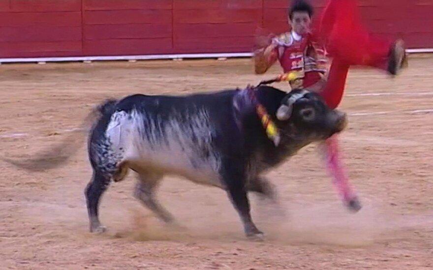 Per bulių bėgimą subadyti du ispanai, o dar trys patyrė galvos traumas
