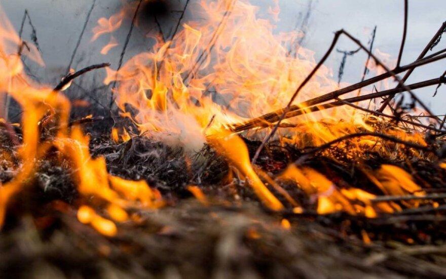 Kinijoje miško gaisras nusinešė 24 gyvybes