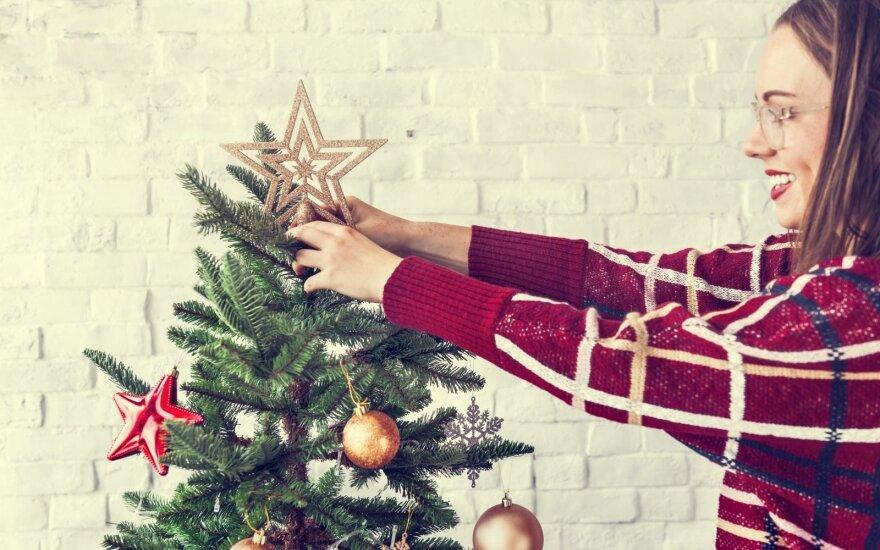 Ką daryti, kad Kalėdų eglutė džiugintų ilgai