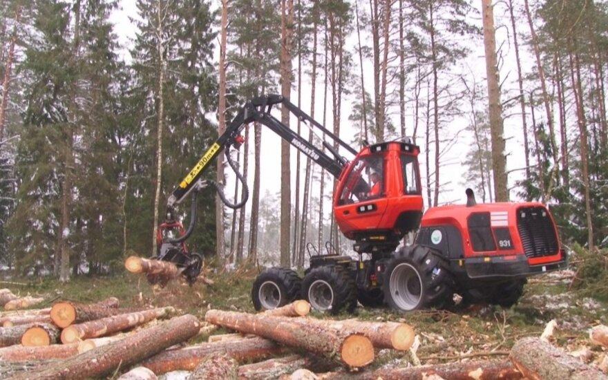 Teismas įpareigojo miškų urėdiją atlyginti už 2014 metais neteisėtai iškirstus miškus