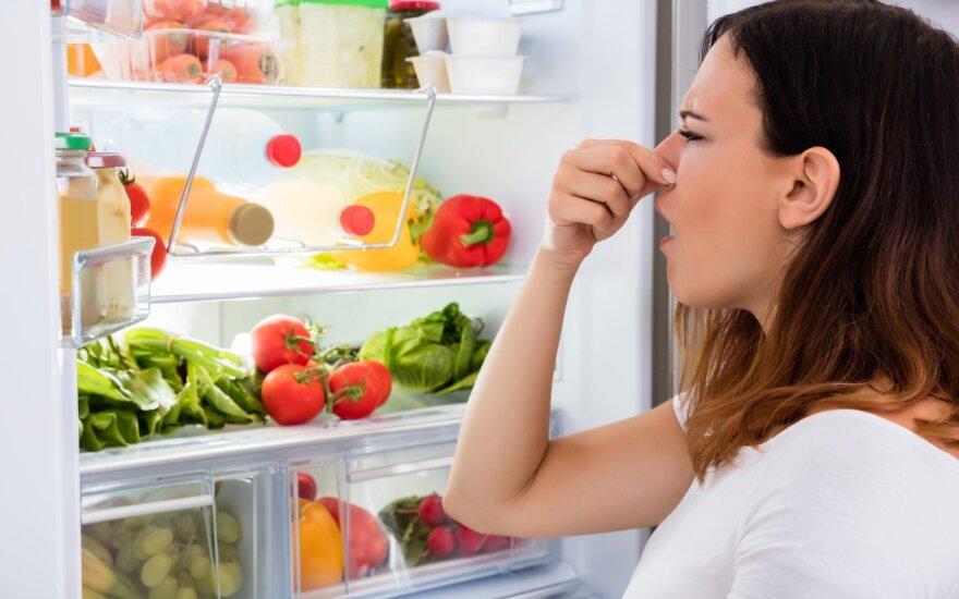 Efektyvios priemonės, panaikinančios blogą kvapą šaldytuve