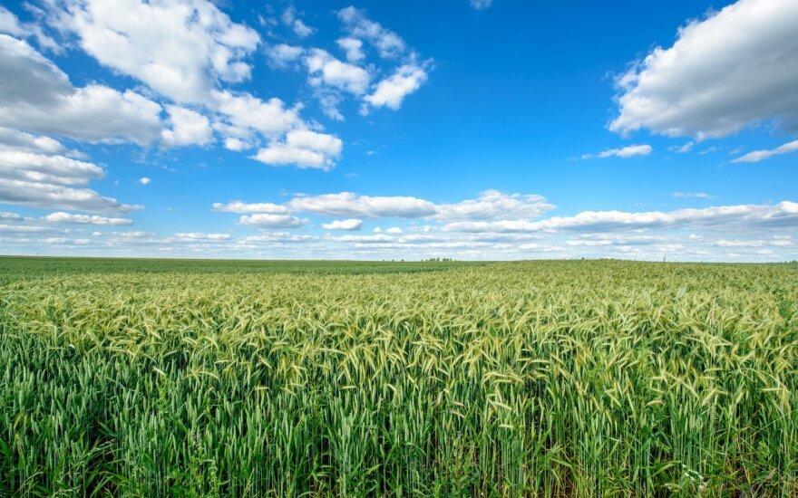 Ūkis kuriamas darnoje su gamta