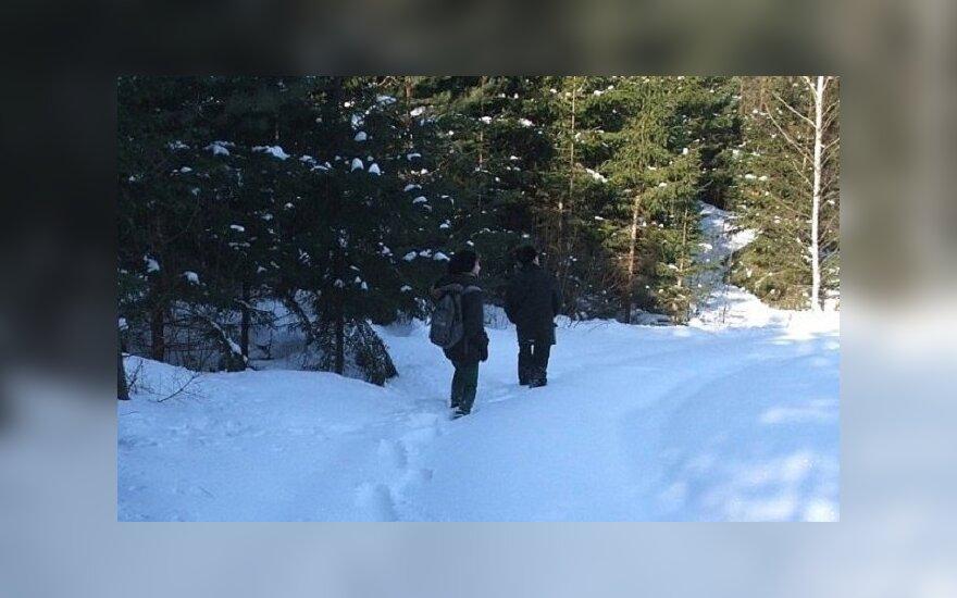 Vilkų apskaita Pabradės seniūnijoje / M. Matulionytės nuotr.